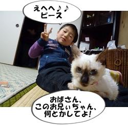 1_20110112113800.jpg