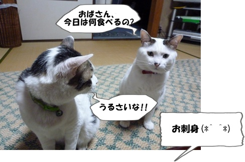 2_20100707200040.jpg