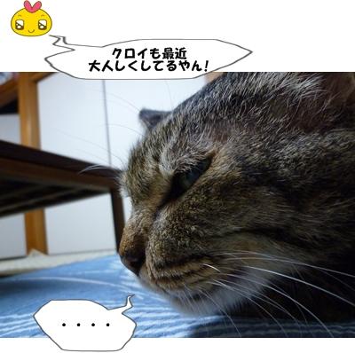 2_20111103001406.jpg