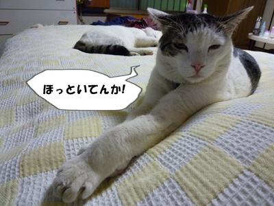 3_20100621205240.jpg