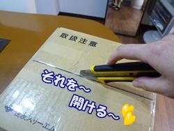 3_20101225133251.jpg