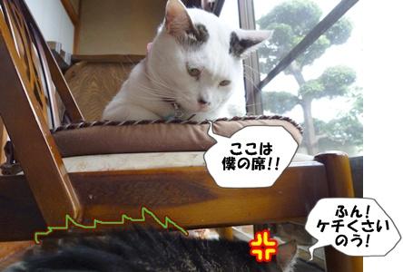 4_20101006114358.jpg