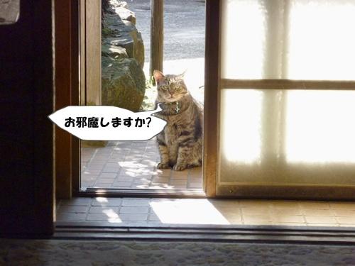 4_20101015140138.jpg