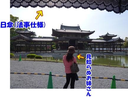 5_20100506195721.jpg