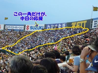 7_20100731152251.jpg