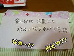 7_20101225133402.jpg