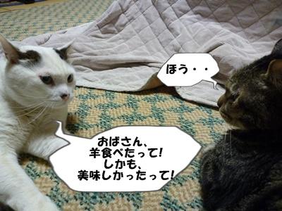 8_20100531232600.jpg