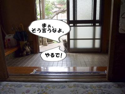 8_20101015140321.jpg