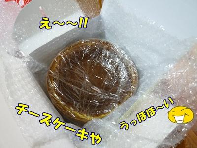 8_20101225133402.jpg