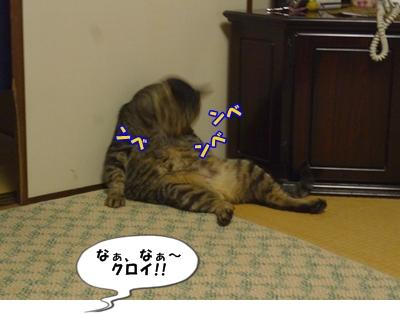 8_20110706091854.jpg