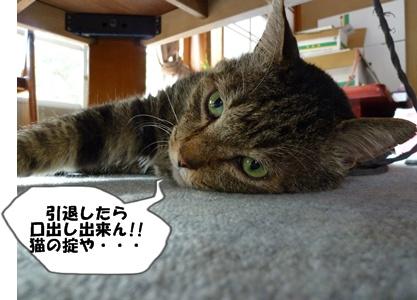 9_20100710165226.jpg