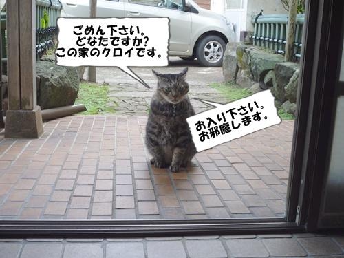 9_20101015140321.jpg