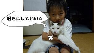 9_20110810073010.jpg