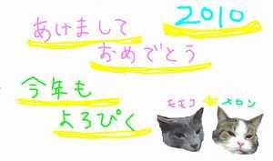 2009_020400241_20100103010529.jpg