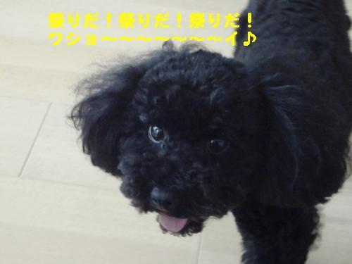 DSC03817_convert_20120311232247★