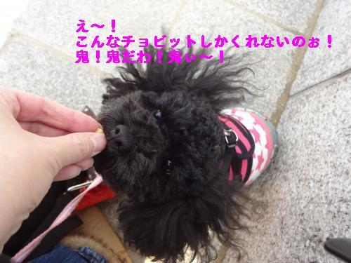 DSC03427_convert_20120213231257.jpg