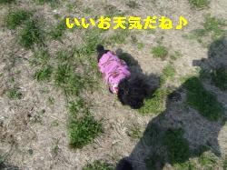 DSC03948_convert_20120314215212.jpg