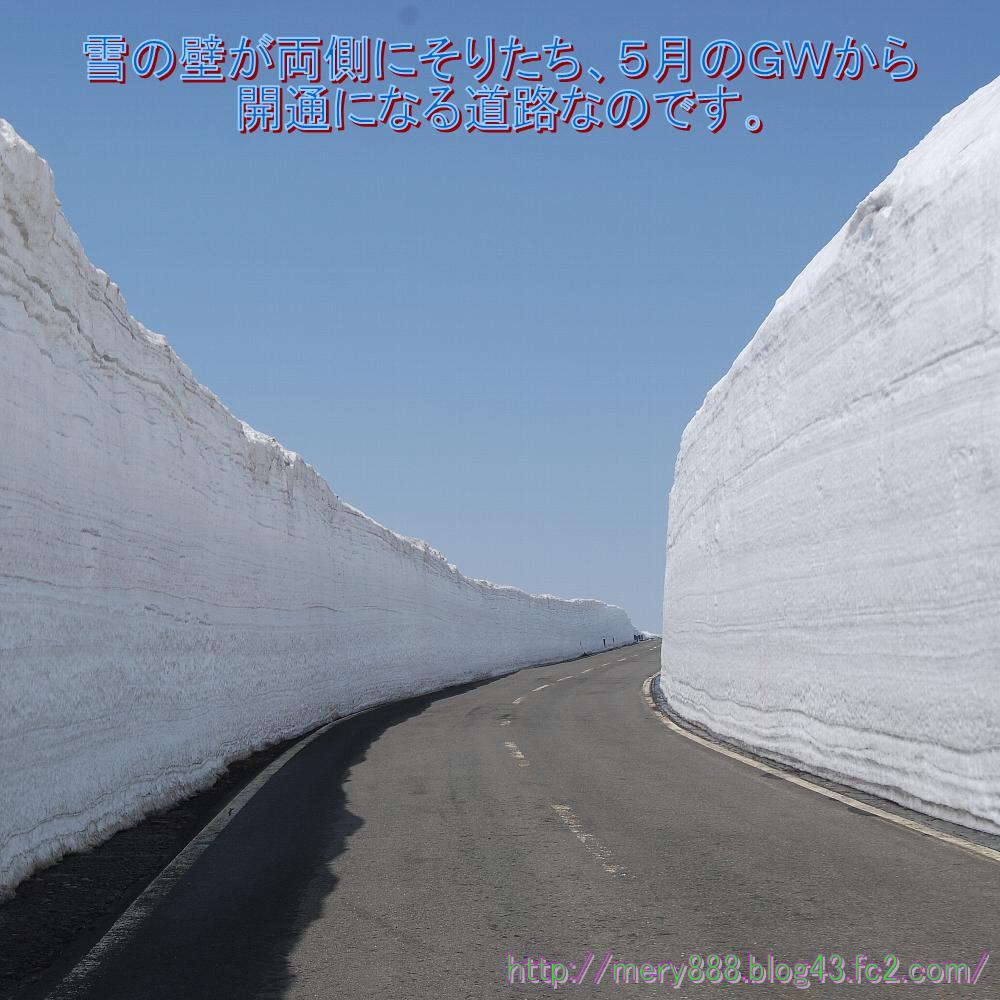 秋田2010_004