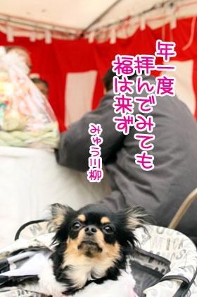 02_20100130093403.jpg