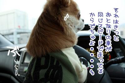 06_20100203125738.jpg