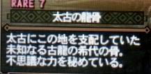 【MH3G】太古の龍骨