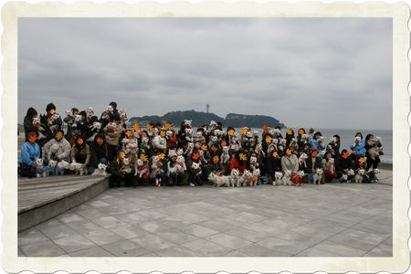 20100328_60 (2)