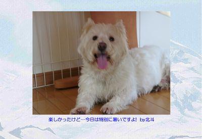 0815hoku_ページ000