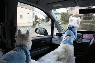 20101107立川オフ会 001 (2)