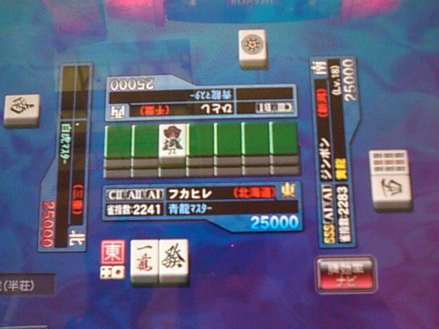 SN3F0509.jpg