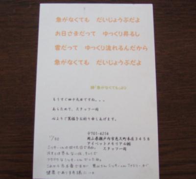 2009_11300006.jpg