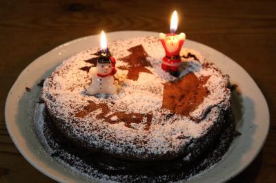 クリスマスケーキ縮小ph