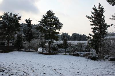雪景色縮小ph