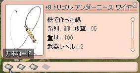 2010.1.18 鞭の事5