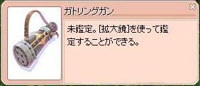 2010.5月 無知子 7