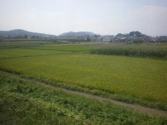 2010.8.30 群馬 1