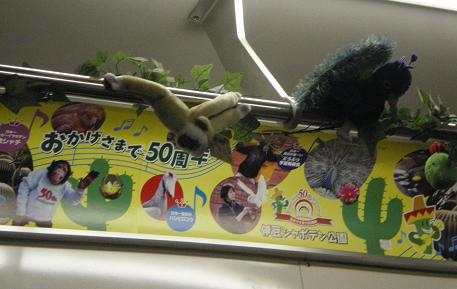 2010.9.8伊豆 6年記念☆旅行 2日目 8