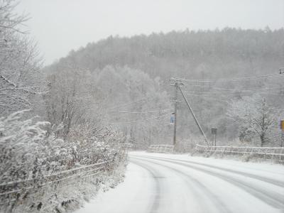 11月21日の雪景色_convert_20091121171629