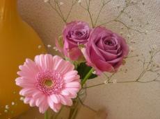 お花2_convert_20100131180828