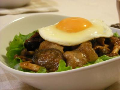 ナスと豚バラのピリ辛炒め丼_convert_20100205143440