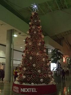 navidad2010-1.jpg