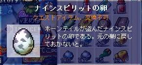 Maple091230_145414.jpg