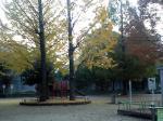 東公園0911261
