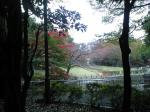 蚕糸の森公園091122