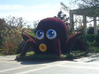 201106沖縄 017