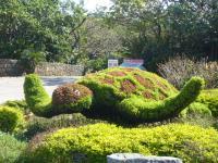 201106沖縄 018