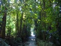 201106沖縄 023