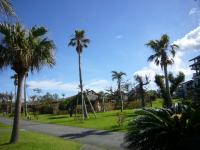 201106沖縄 043