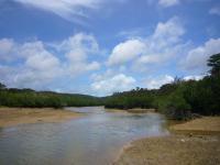 201106沖縄 053
