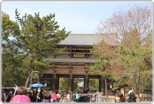 奈良公園303238