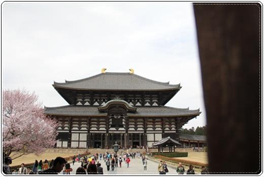 奈良公園303235